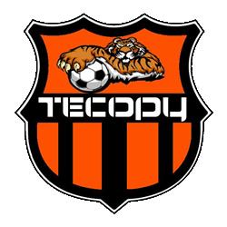6e20f0149fb5a FutLiga - Liga de Futebol Amador